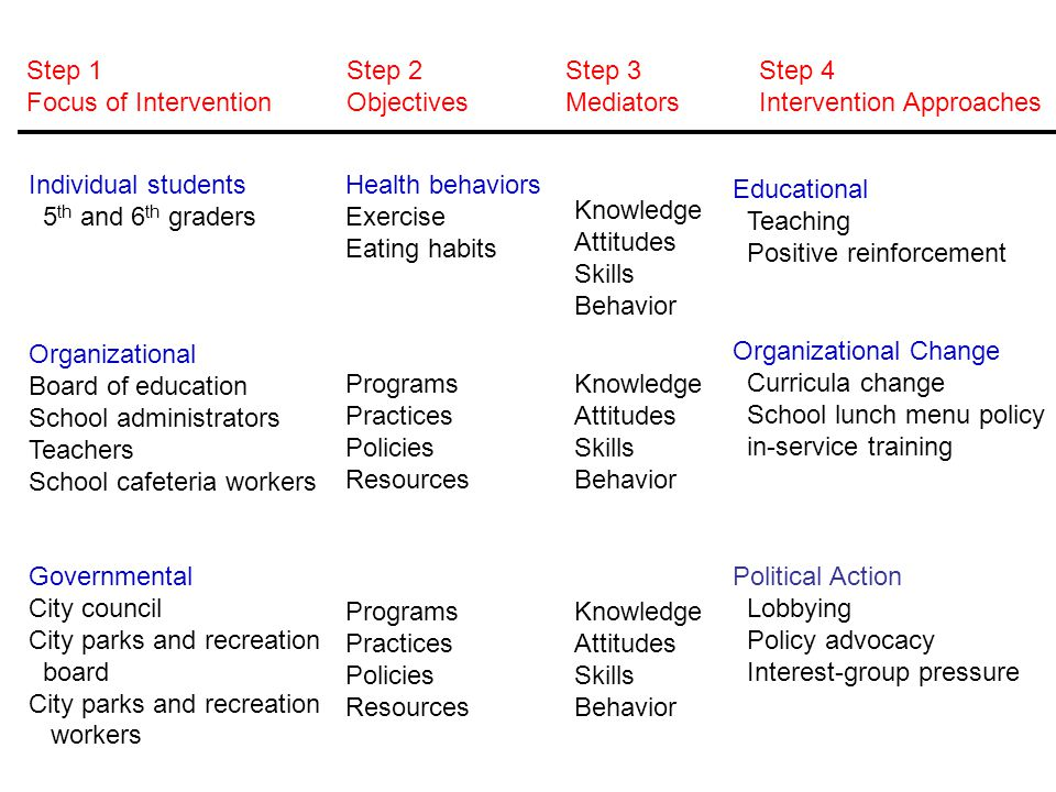 Step 1 Focus of Intervention. Step 2. Objectives. Step 3. Mediators. Step 4. Intervention Approaches.