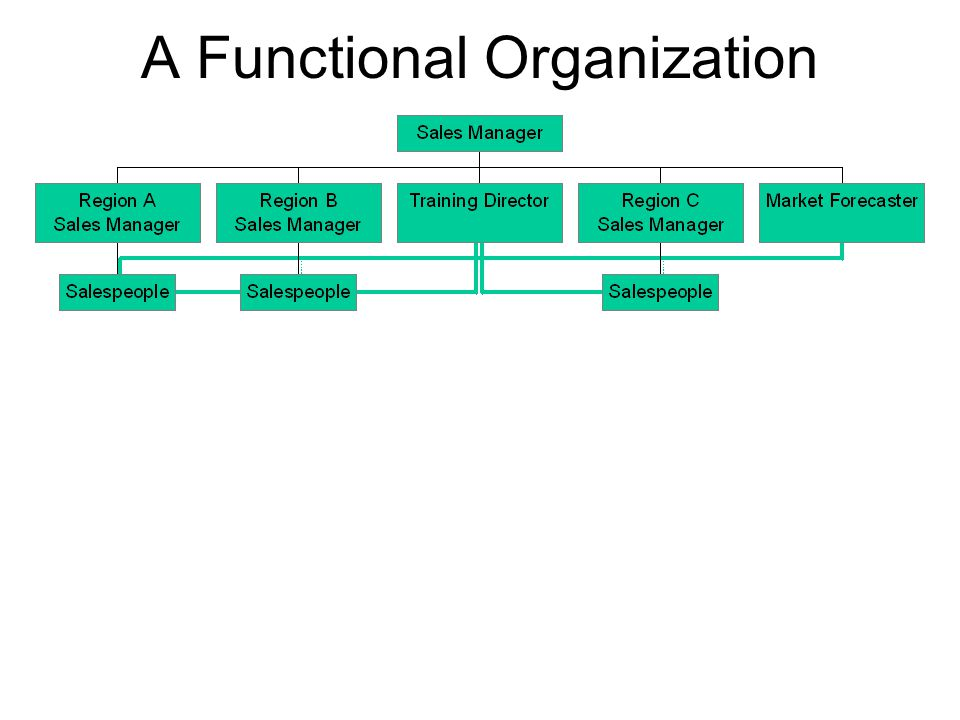 A Functional Organization