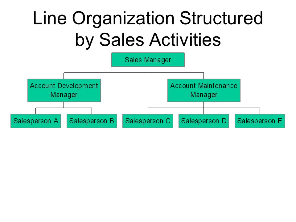 Line Organization Structured by Sales Activities