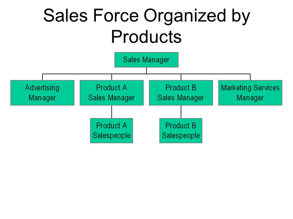 Sales Force Organized by Products