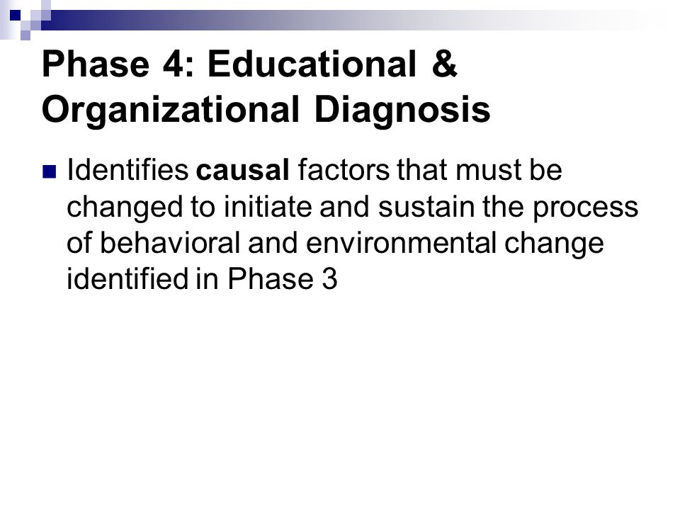 Phase 4: Educational & Organizational Diagnosis