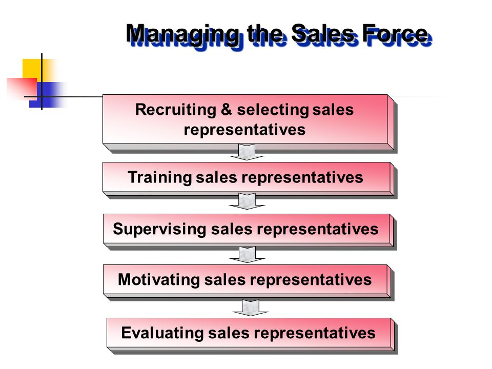 Recruiting & selecting sales representatives Managing the Sales Force