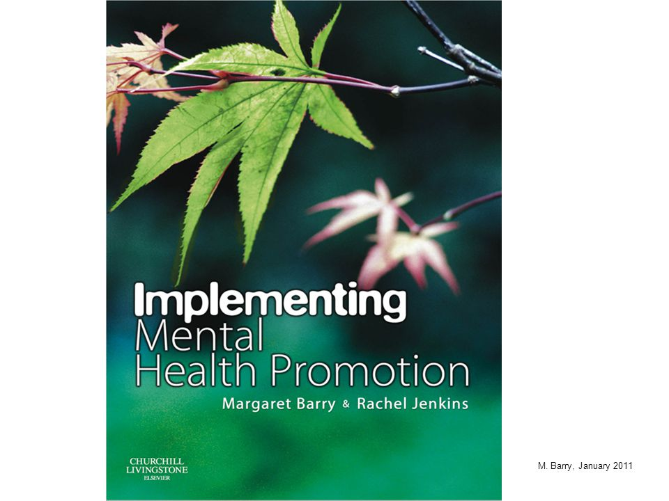 Health Promotion Model (WHO Ottawa Charter)