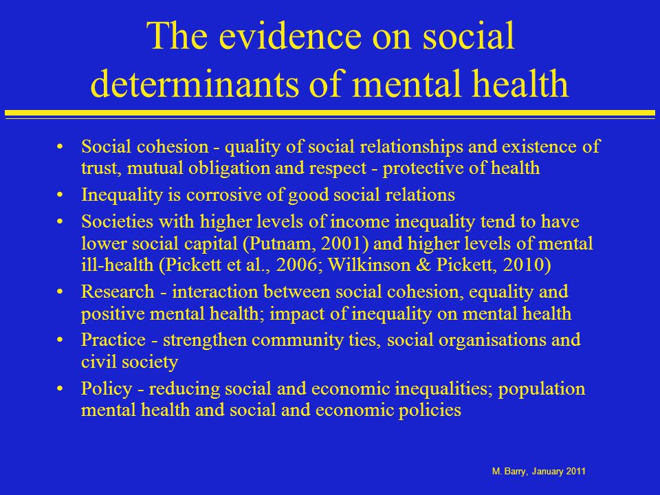 The evidence on social determinants of mental health