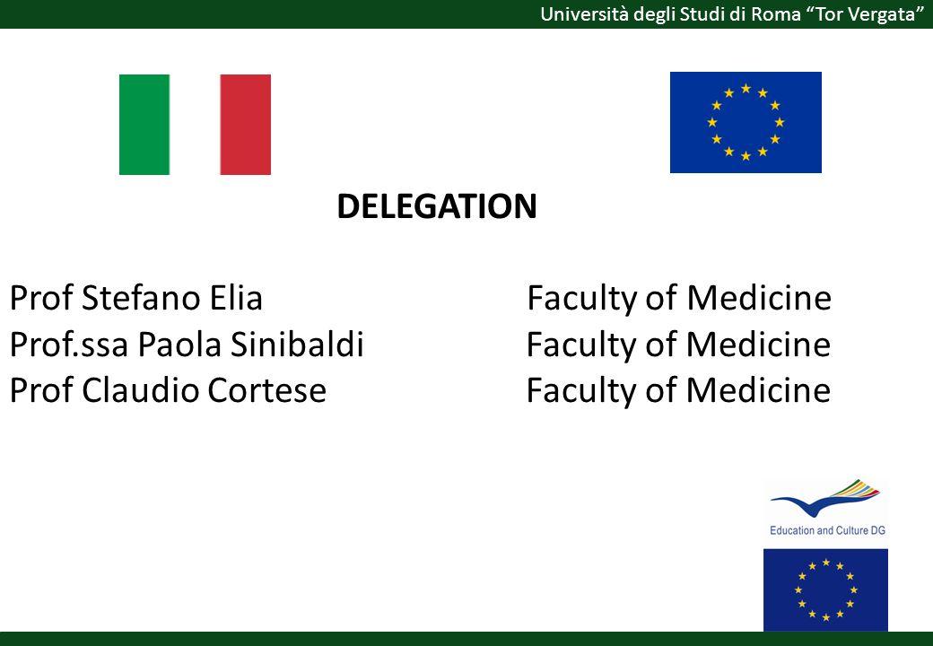 DELEGATION Prof Stefano Elia. Faculty of Medicine Prof