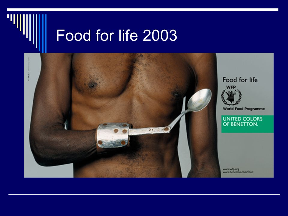 Food for life 2003