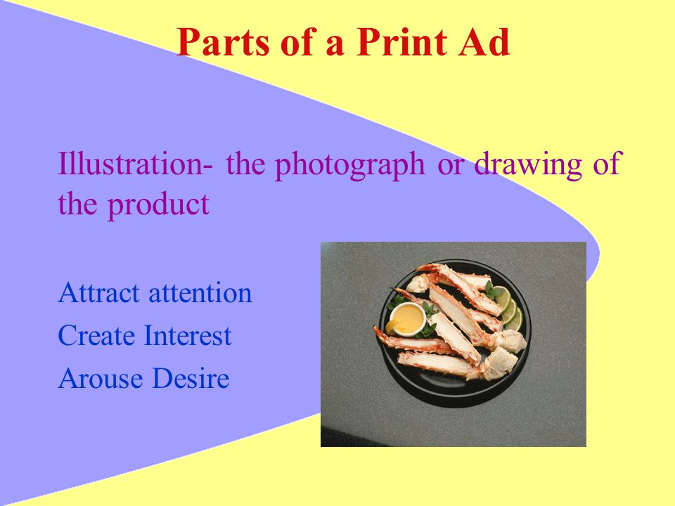 Parts of a Print Ad Illustration- the photograph or drawing of