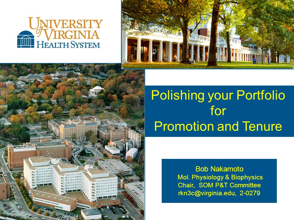 Polishing your Portfolio for Promotion and Tenure