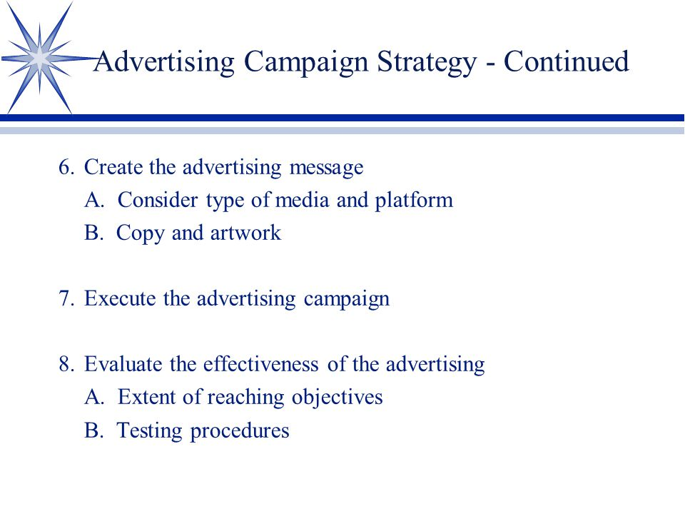 Advertising Campaign Strategy - Continued