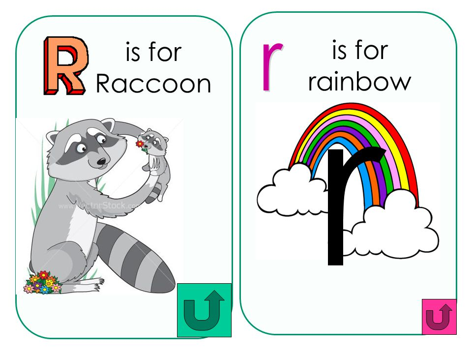 is for Raccoon is for rainbow r r