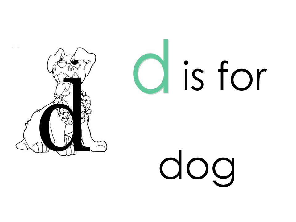 d is for d dog