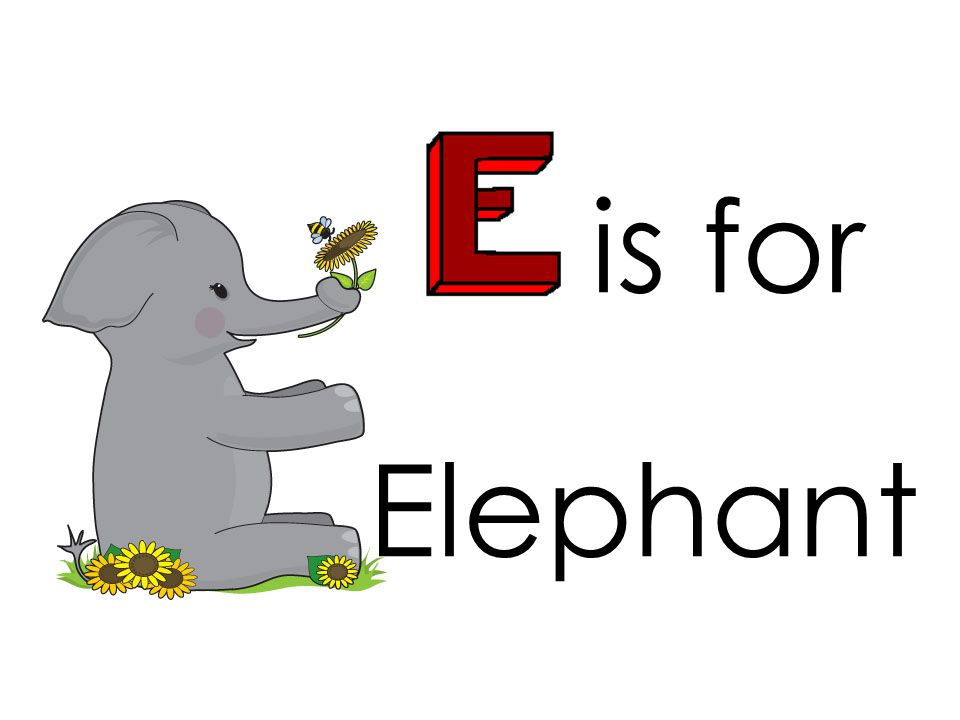 is for Elephant