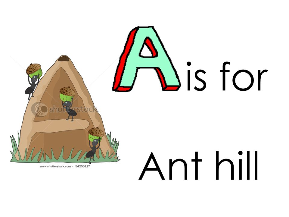 is for Ant hill
