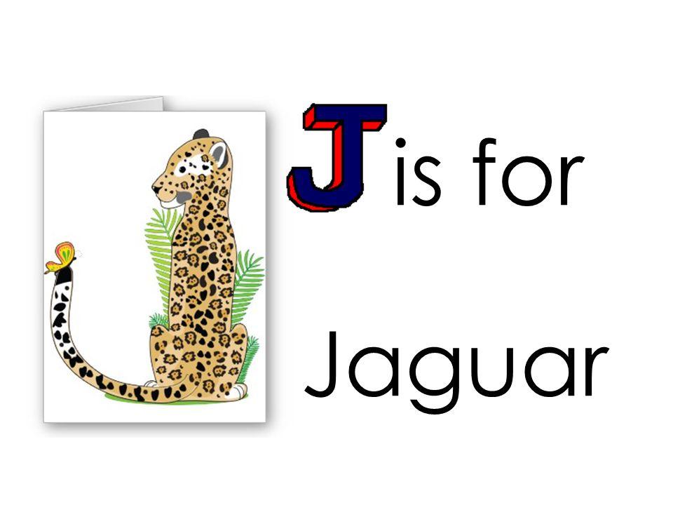 is for Jaguar