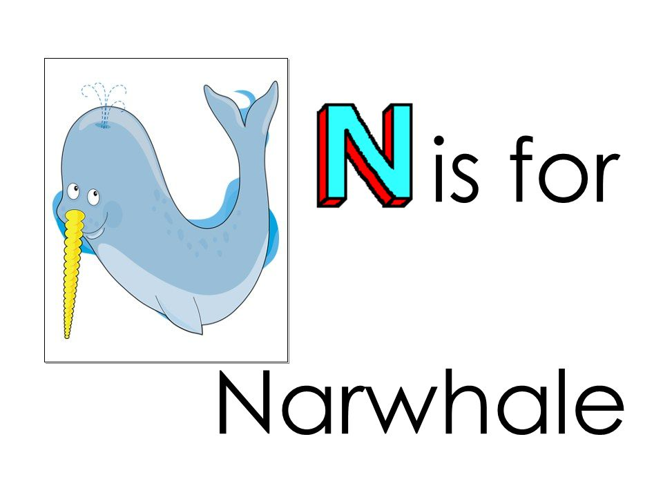 is for Narwhale