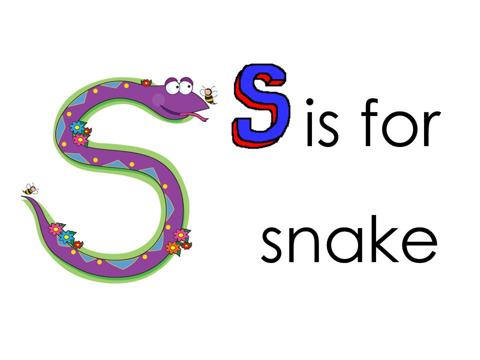 is for snake