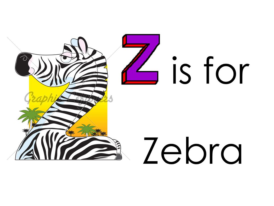 is for Zebra