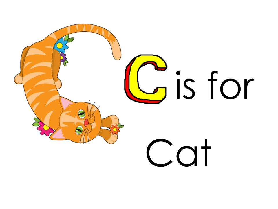 is for Cat