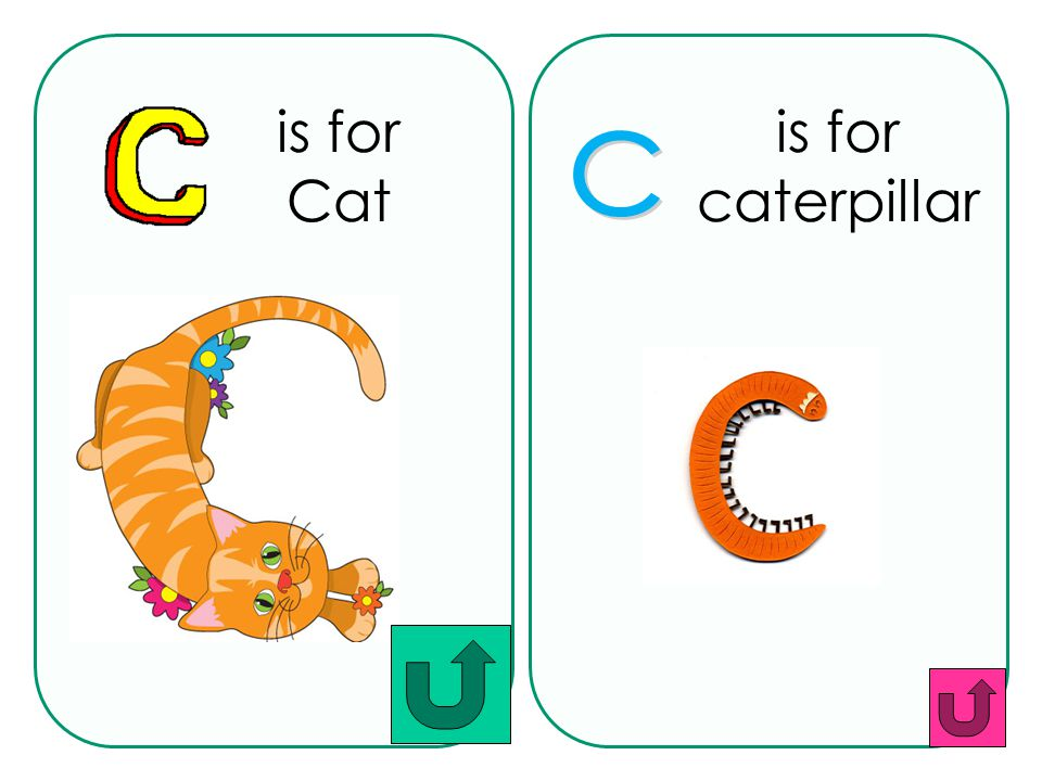 is for Cat is for caterpillar c
