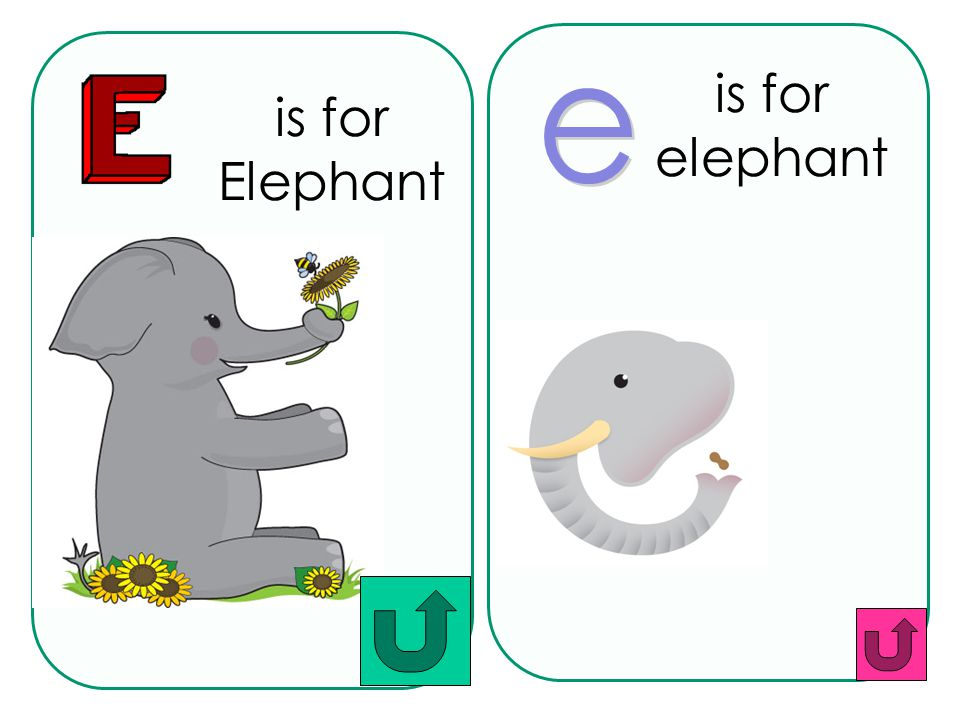 is for elephant is for Elephant e