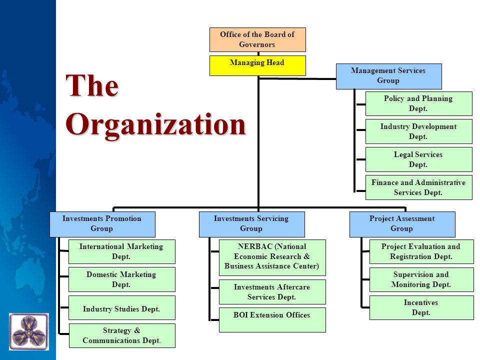 The Organization Office of the Board of Governors Managing Head