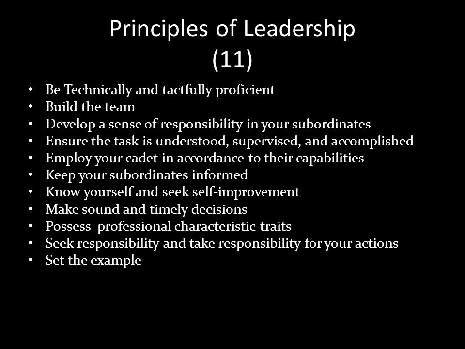 Principles of Leadership (11)