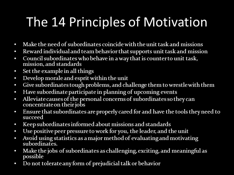 The 14 Principles of Motivation
