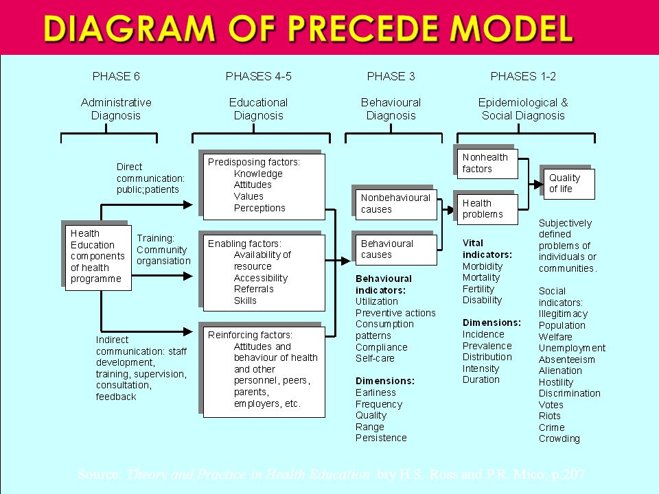 DIAGRAM OF PRECEDE MODEL