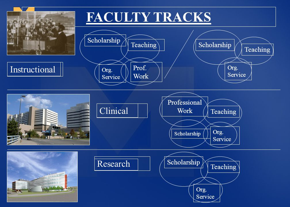 FACULTY TRACKS Instructional Clinical Research Scholarship Teaching
