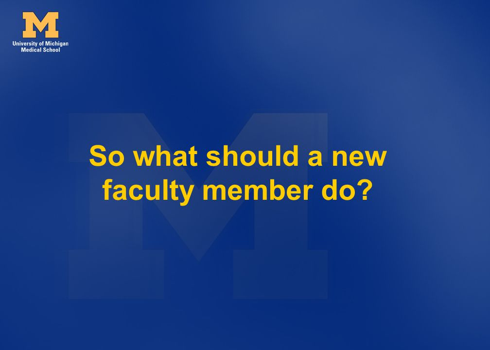 So what should a new faculty member do