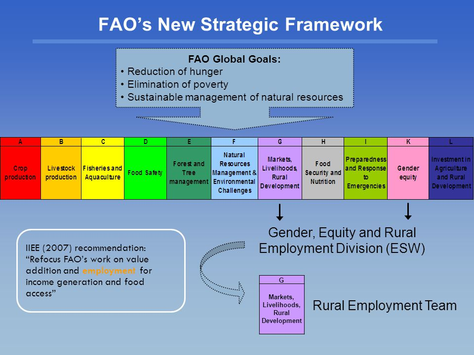FAO's New Strategic Framework