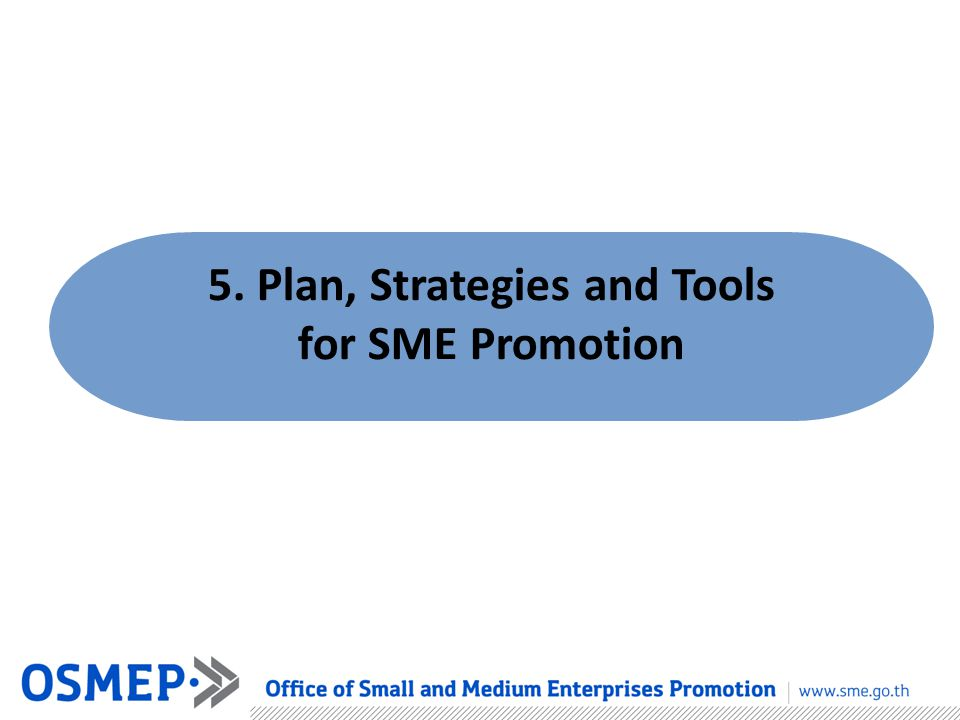 5. Plan, Strategies and Tools for SME Promotion