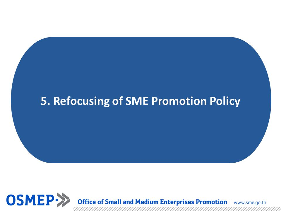 5. Refocusing of SME Promotion Policy