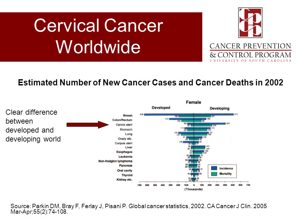 Cervical Cancer Worldwide
