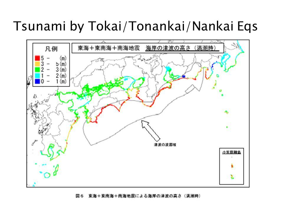 Tsunami by Tokai/Tonankai/Nankai Eqs