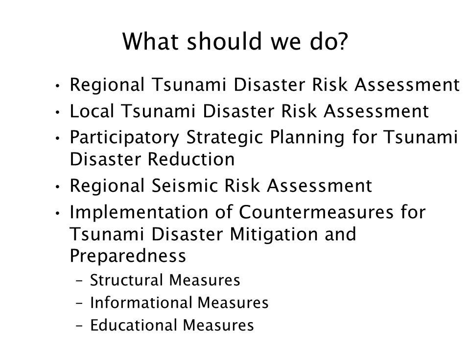 What should we do Regional Tsunami Disaster Risk Assessment