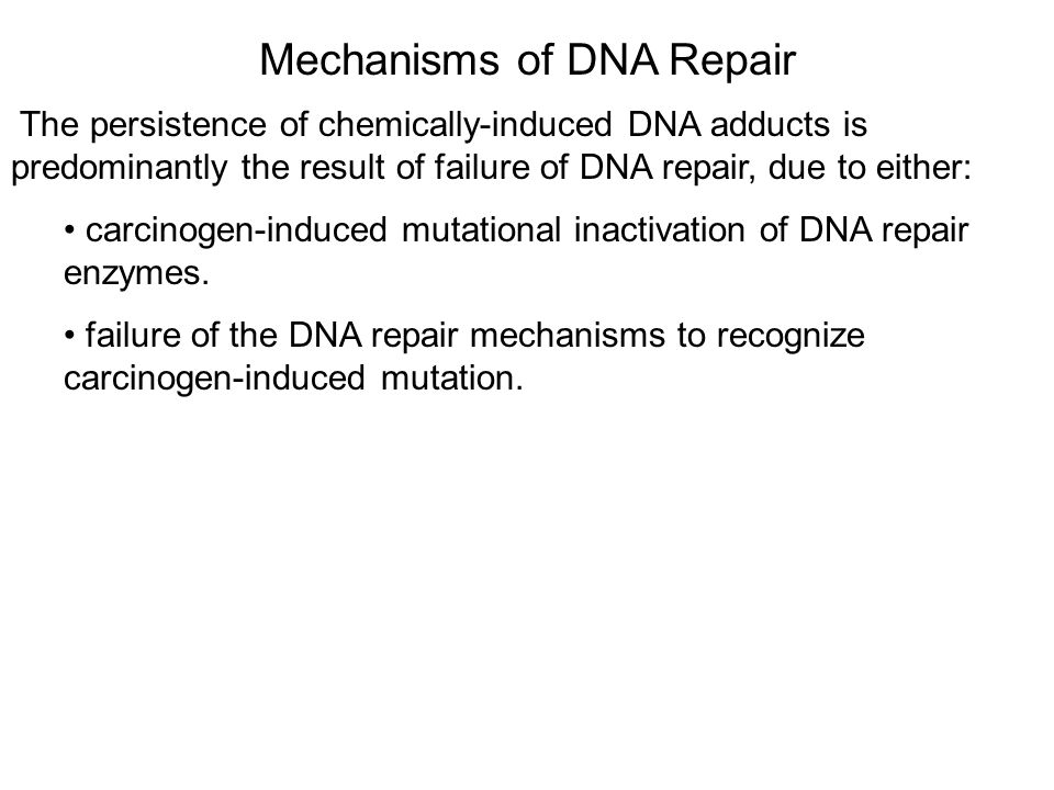 Mechanisms of DNA Repair