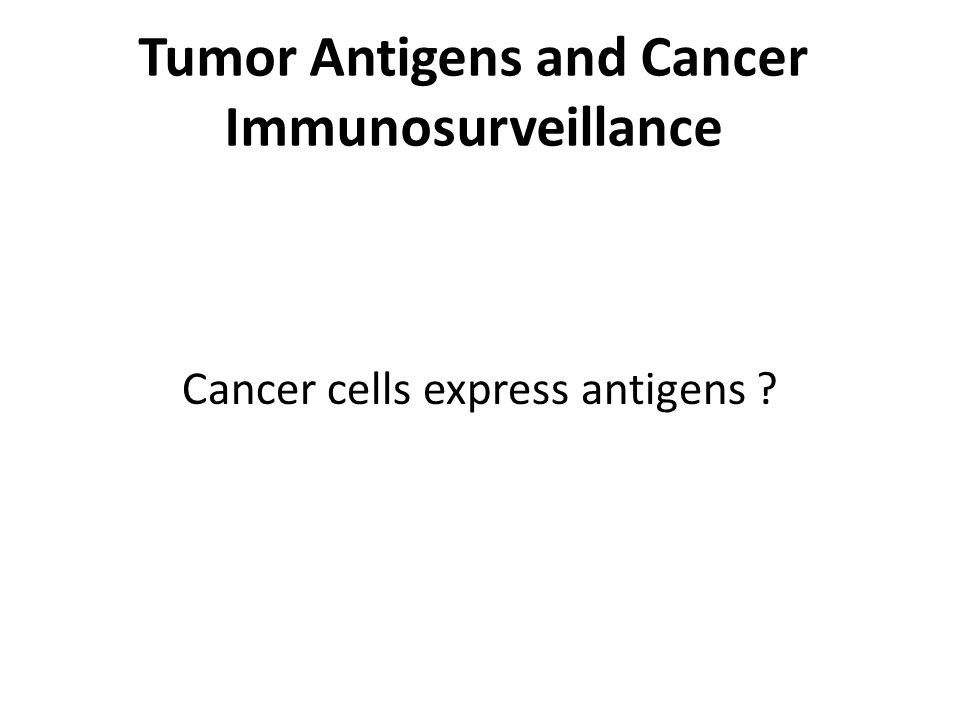 Tumor Antigens and Cancer Immunosurveillance