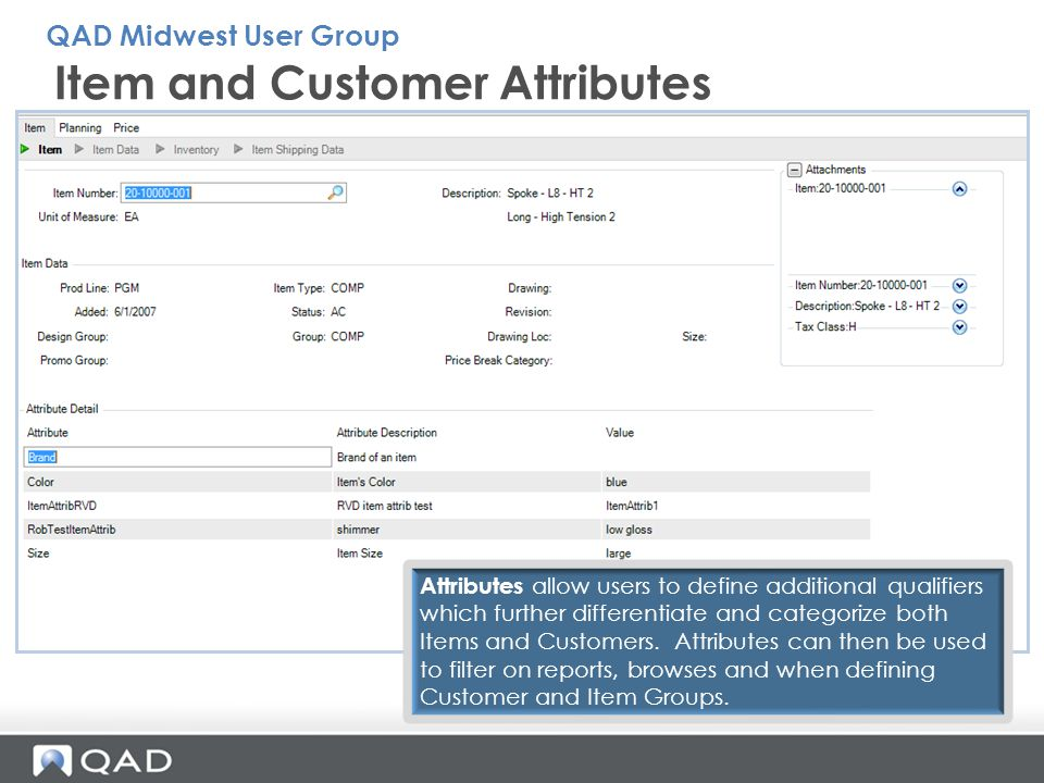 Item and Customer Attributes