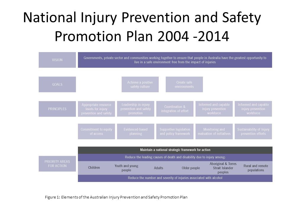 National Injury Prevention and Safety Promotion Plan 2004 -2014