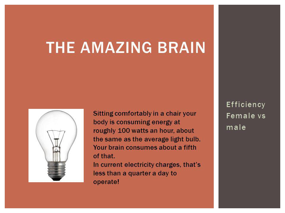 The amazing brain Efficiency Female vs male