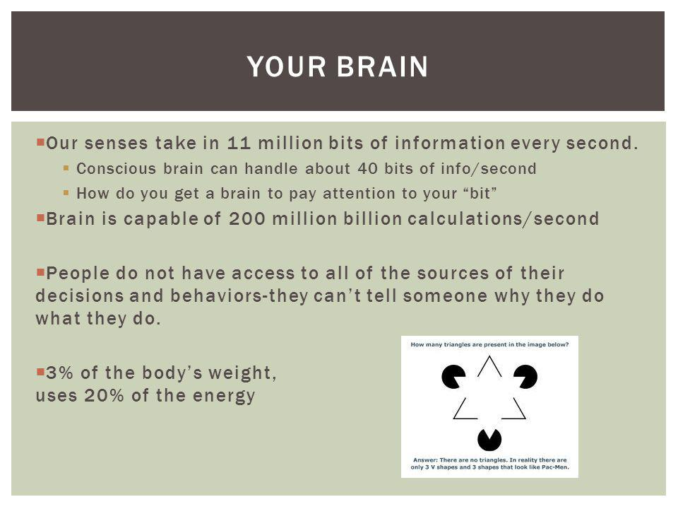 Your Brain Our senses take in 11 million bits of information every second. Conscious brain can handle about 40 bits of info/second.