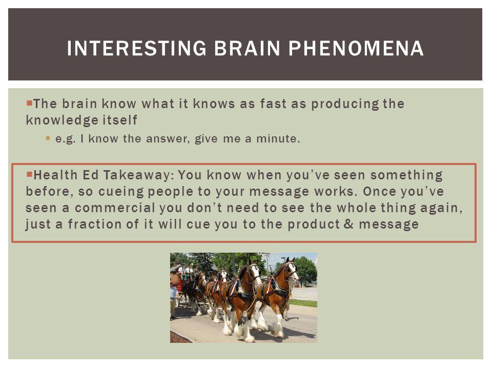 Interesting Brain Phenomena