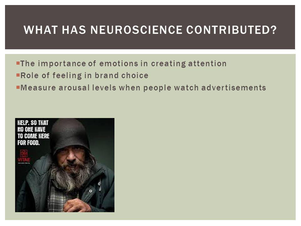What has neuroscience contributed