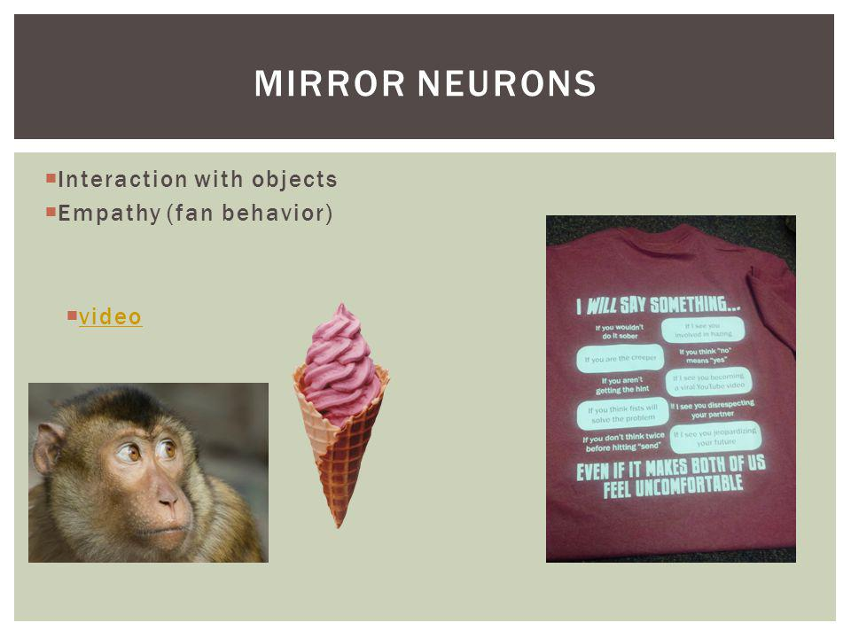 Mirror neurons Interaction with objects Empathy (fan behavior) video
