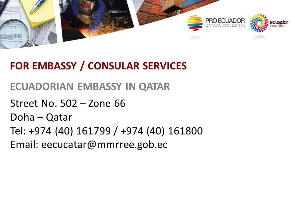 FOR EMBASSY / CONSULAR SERVICES