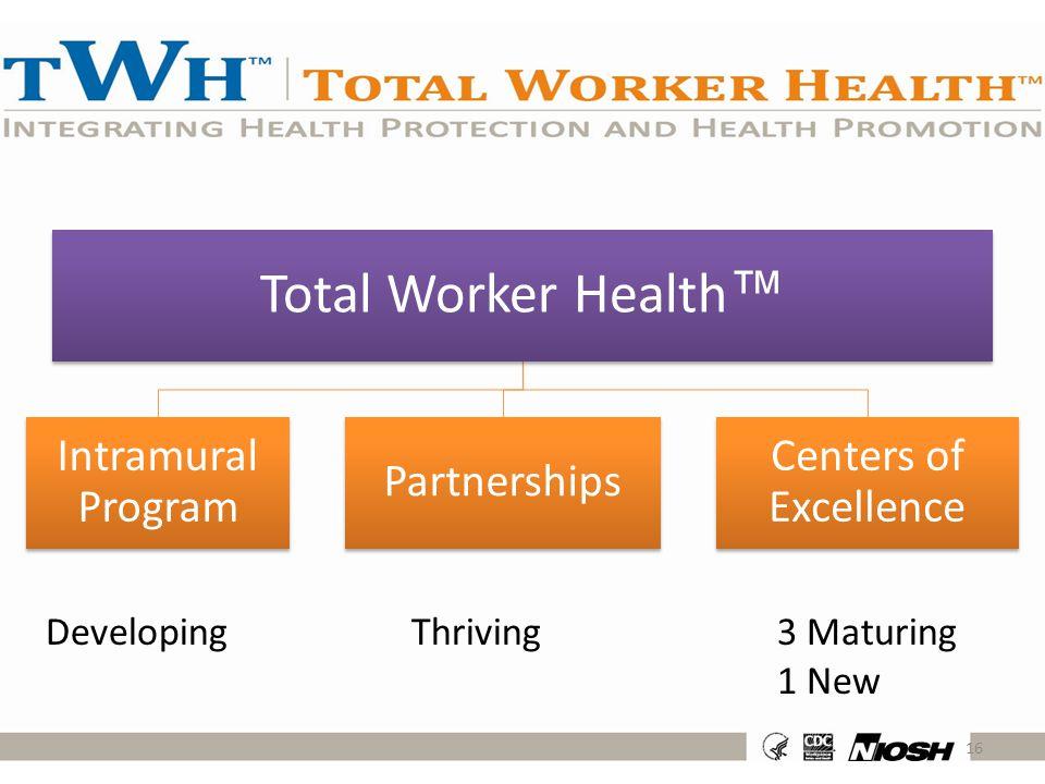 Total Worker Health™ Intramural Program Partnerships