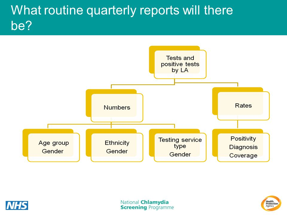 What routine quarterly reports will there be