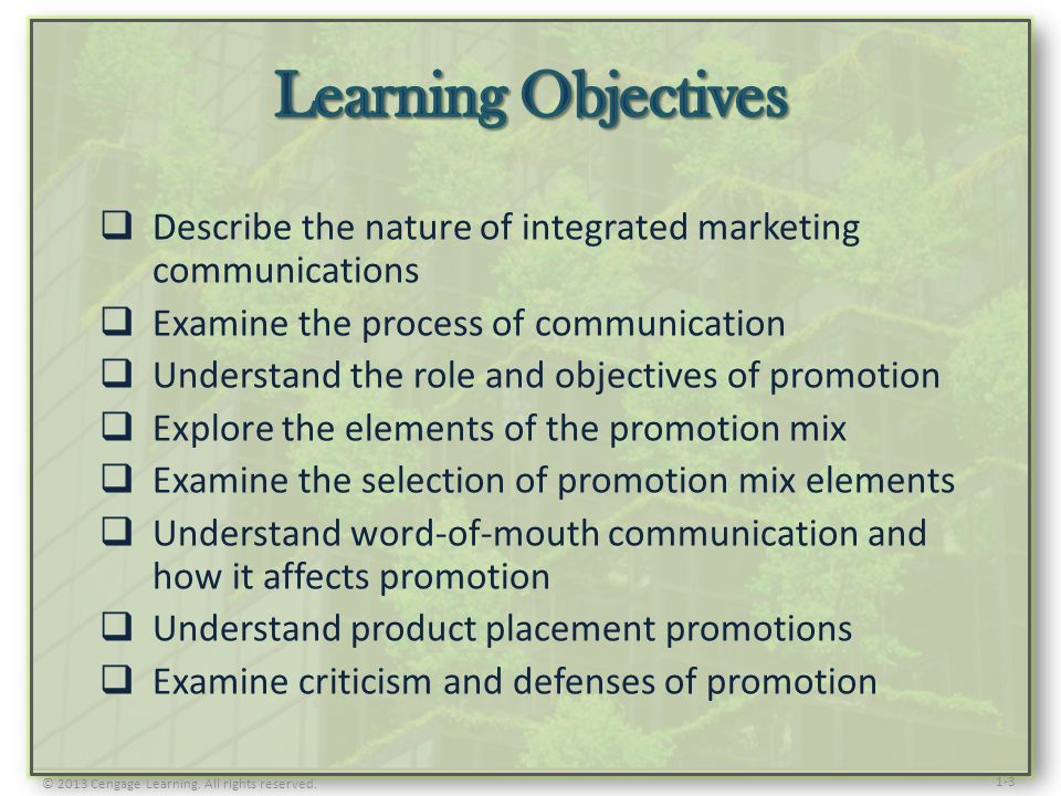 Learning Objectives Describe the nature of integrated marketing communications. Examine the process of communication.