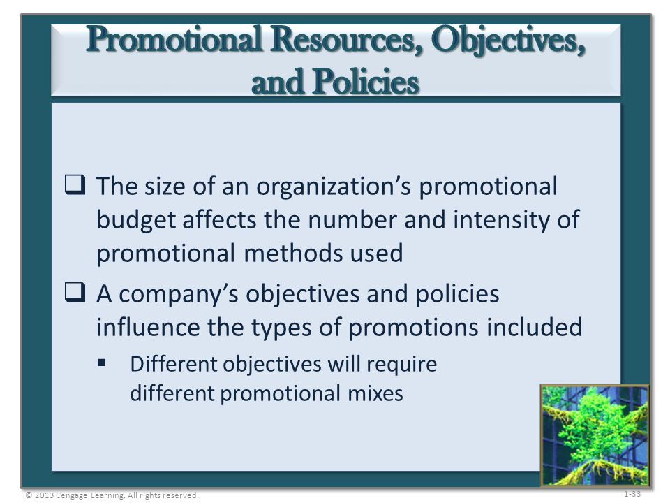Promotional Resources, Objectives, and Policies